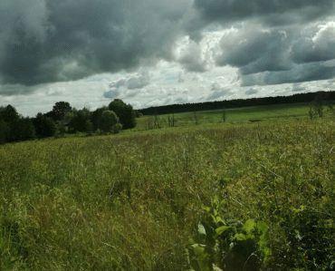 Ответы получение земельного участка инвалидам ⋆ Citize