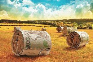 Субсидия для лпх от государства